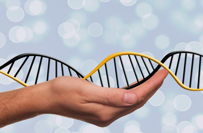 Генетические технологии