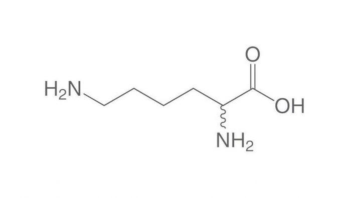 Формула лизиновой аминокислоты
