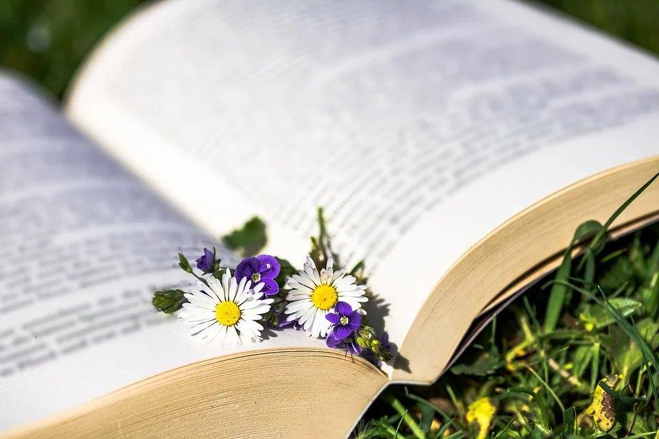 В Ашхабаде вышел XIII том книги «Лекарственные растения Туркменистана»